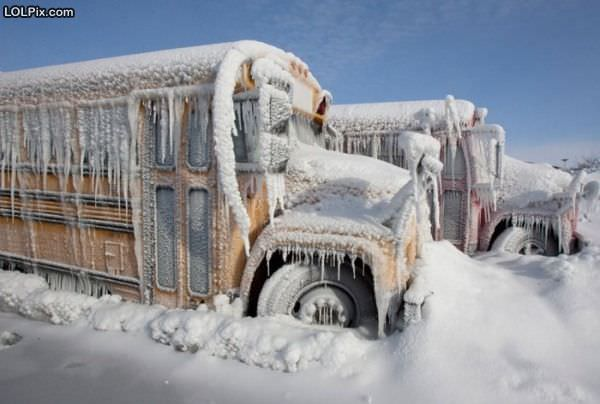 Viewing Page 7/18 from Funny Pictures 1015 (Frozen School Buses