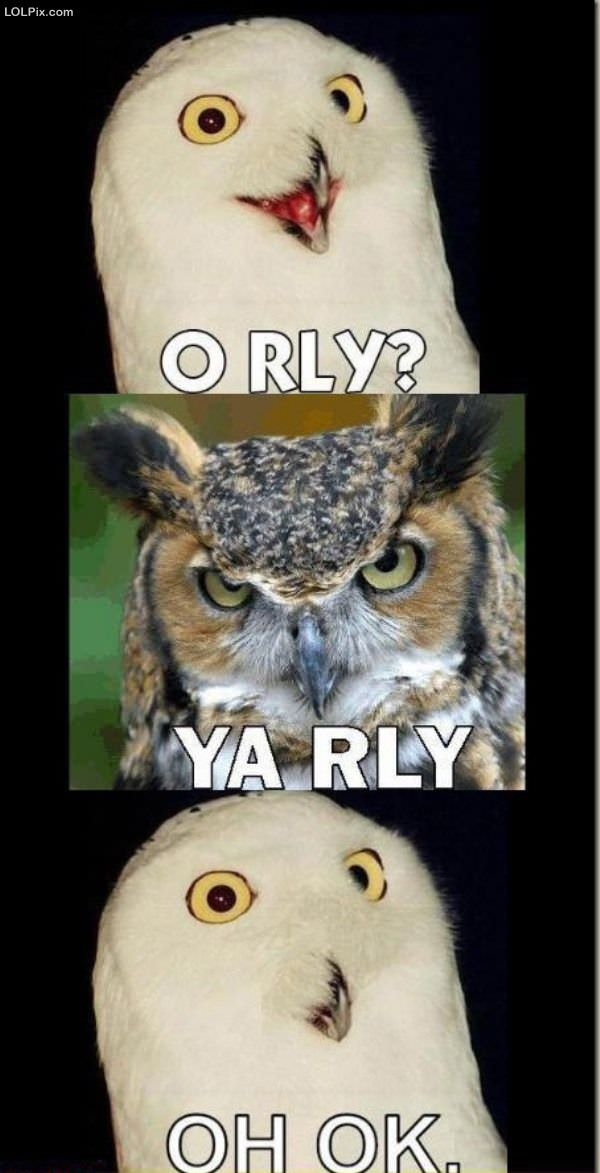 Oh rly owl