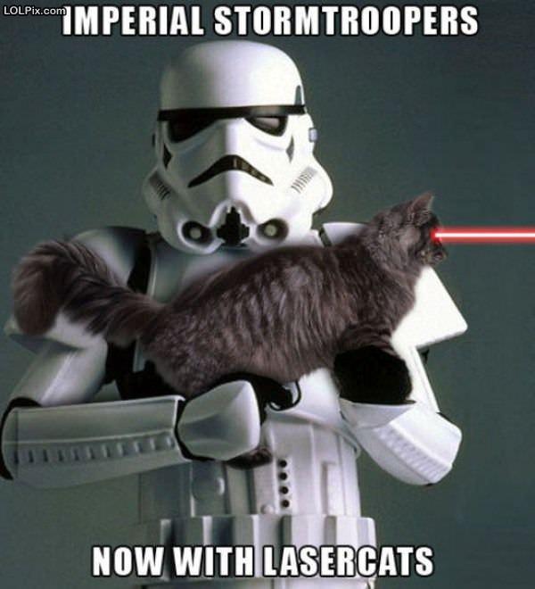 Stormtrooper with lasercat