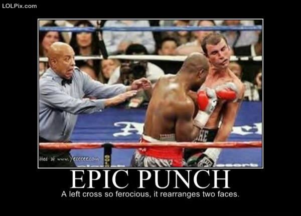 Page From Funny Pictures Epic Punch Posted