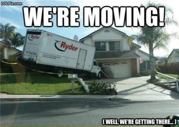 working on moving funny pictures 1260 pic 15