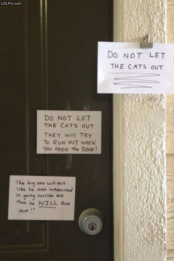 Dont Let The Cats Out