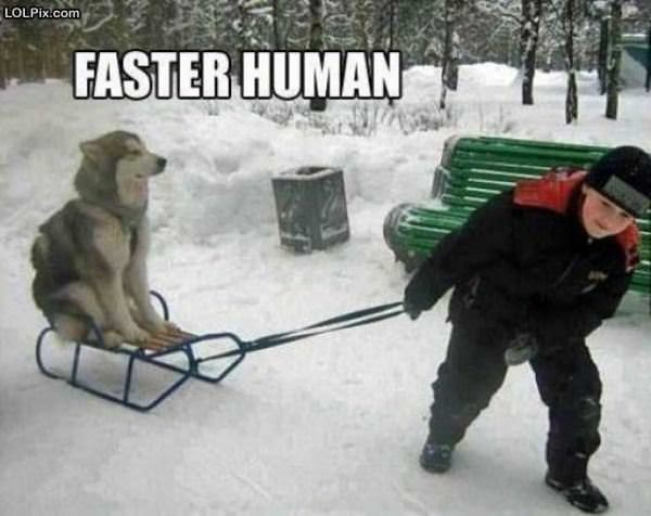 Go Faster Human