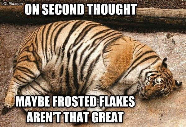 Frosted Flakes