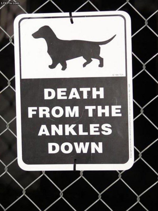 Ankle Death