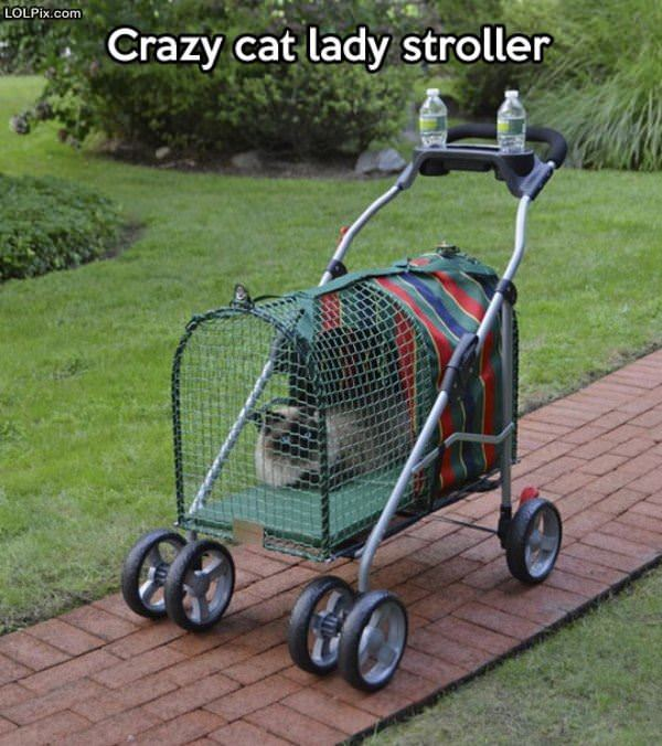 Crazy Cat Lady Stroller