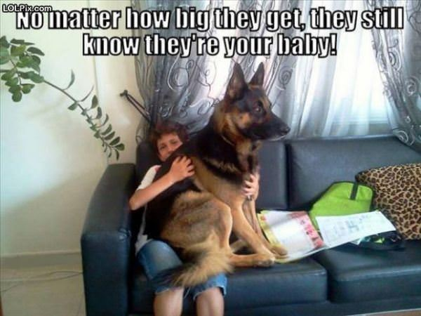 No Matter How Big