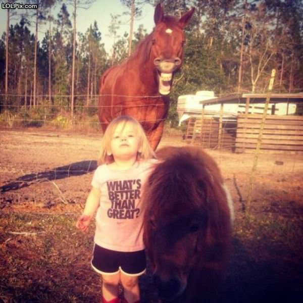 The Horse Photobomb