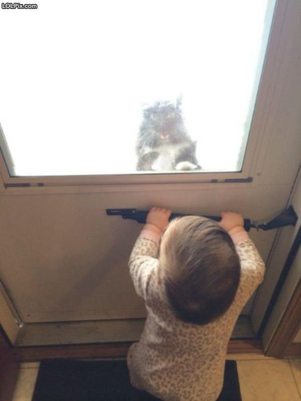 Hey Please Let Me In