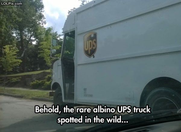 Behold The Rare Ups Truck