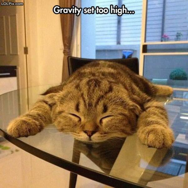 Gravity Too High