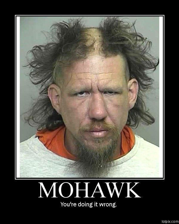Viewing Page 10/17 from Funny Pictures 475 (Mohawk Wrong) Posted 1/29 ...
