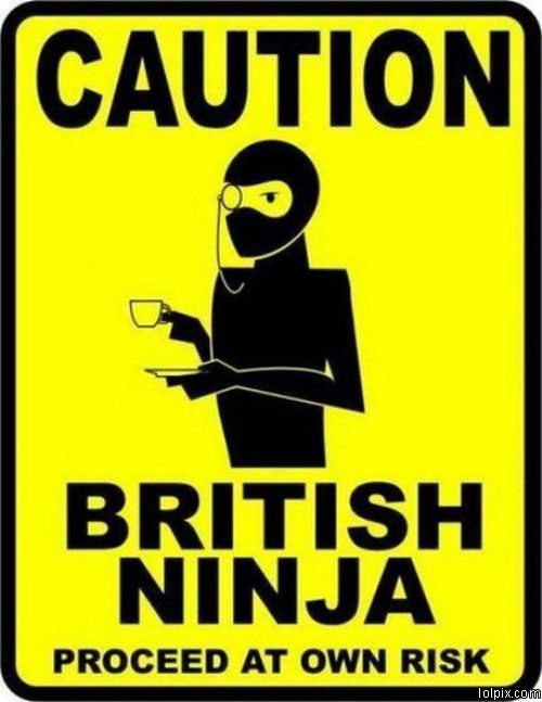 Viewing page 1 17 from funny pictures 584 british ninja posted 7 6