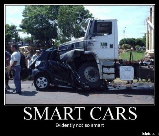 Smart Cars Funny Pictures Pic Jpg 550x471 Rear Car Stupid Driver