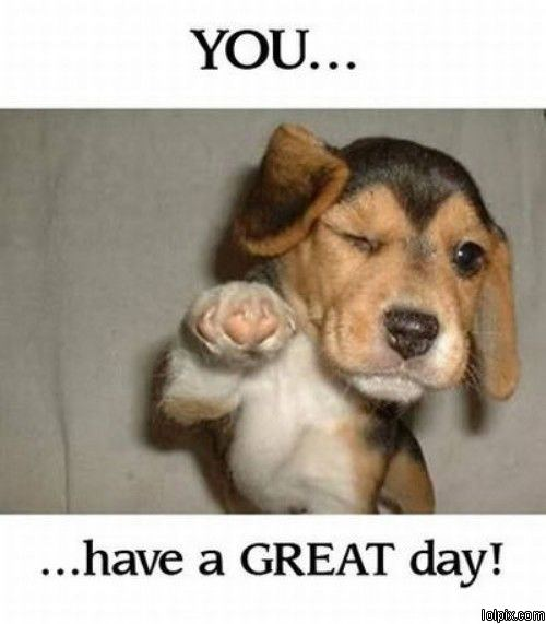 Have A Good Day Honey Quotes: Have A Great Day Funny Quotes. QuotesGram