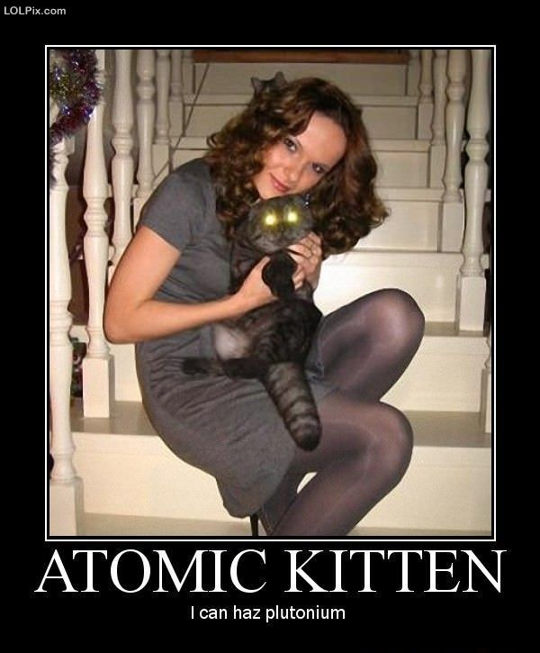 funny kitten videos. Atomic Kitten videos, photos,