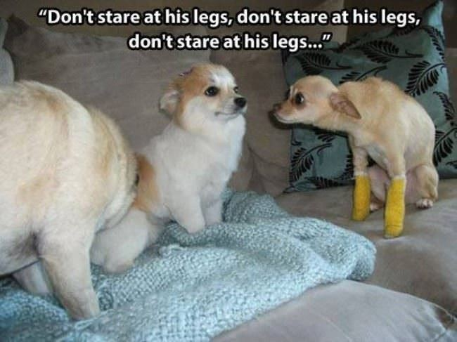 dont stare
