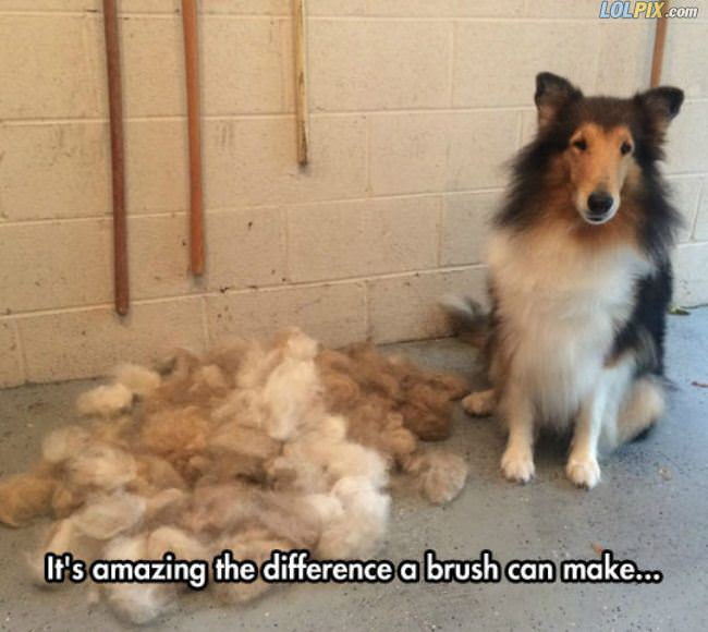difference a brush can make