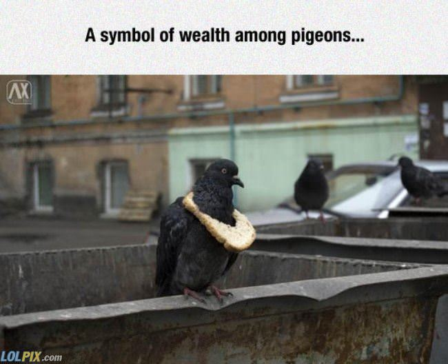 a symbol of wealth