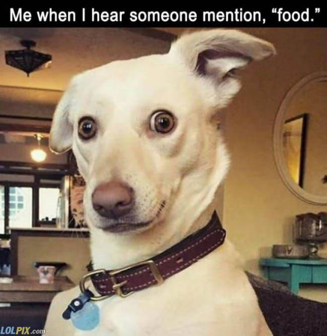 someone mentioned food