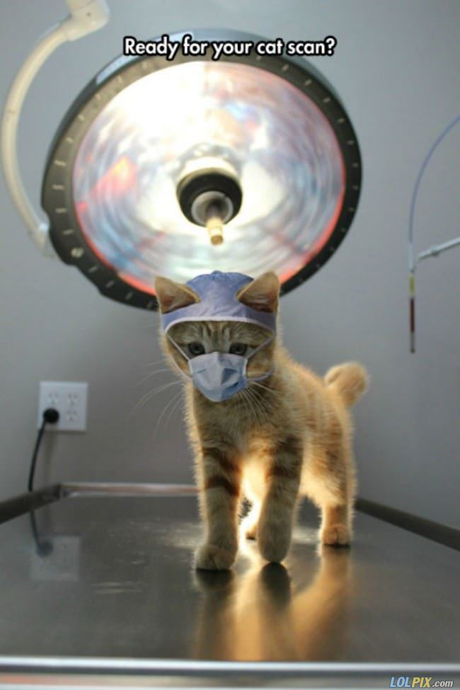 ready for a cat scan