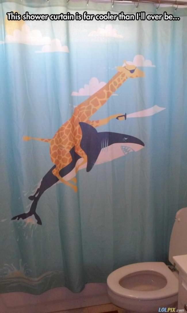 this shower curtain
