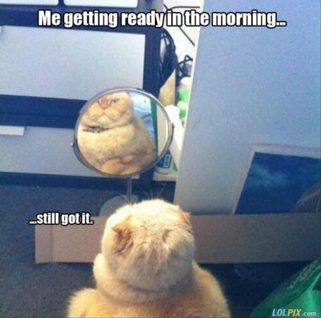 getting ready in the morning