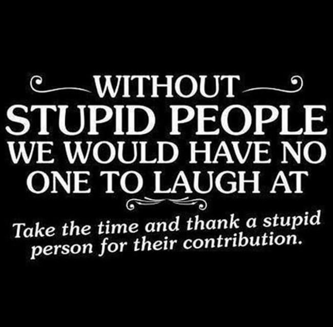 thank a stupid person today