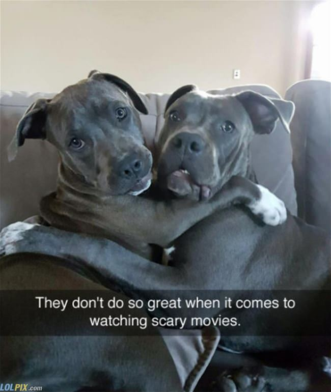 watching scary movies