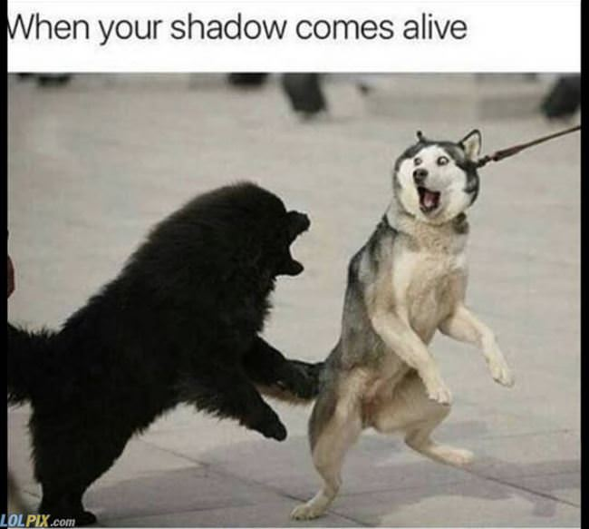 your shadow comes alive