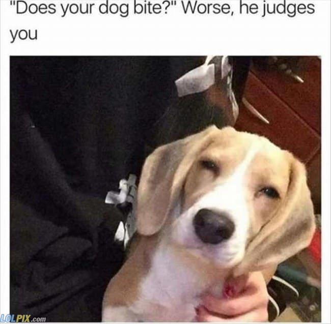 he judges you