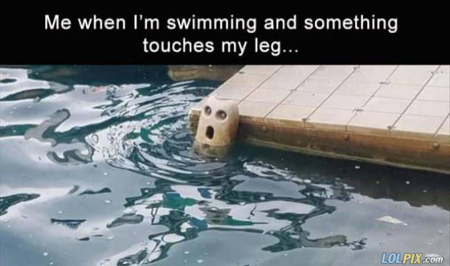 something touches my leg
