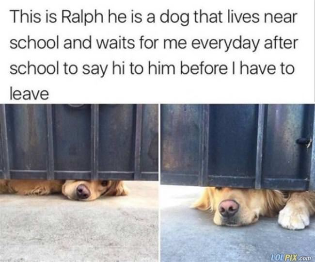 how ralph waits for me