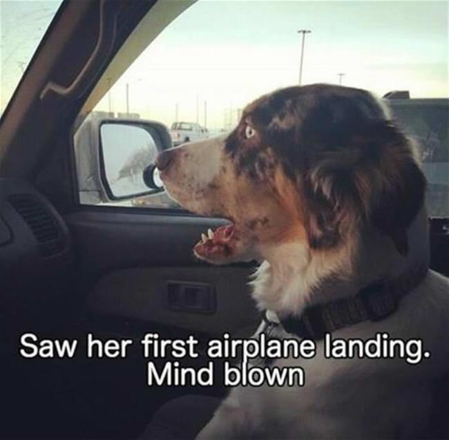 first airplane landing