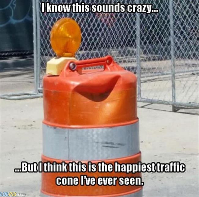 happiest traffic cone i have ever seen