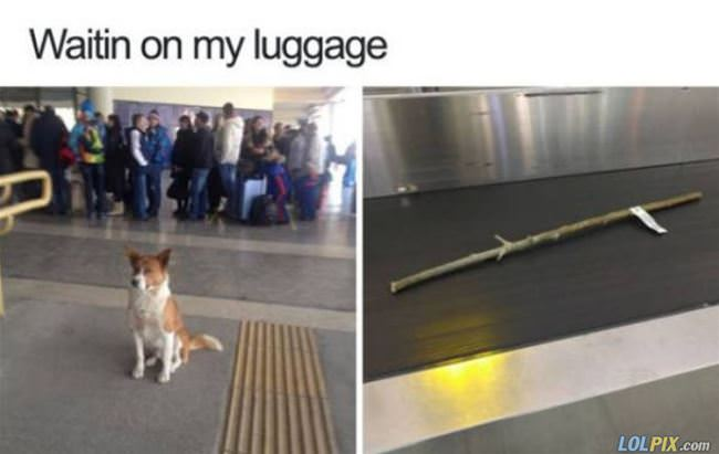 waiting for my luggage
