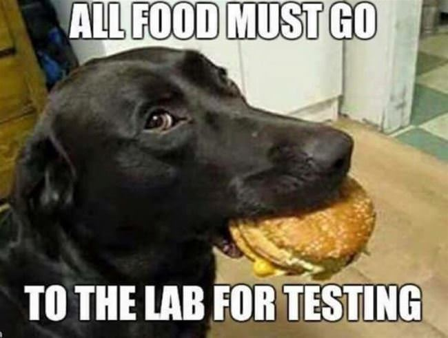 all food must be tested
