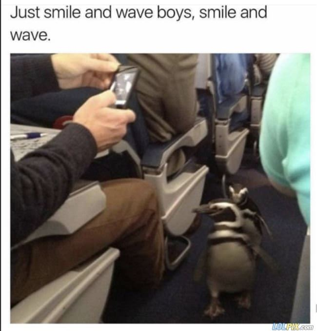 just smile and wave boys