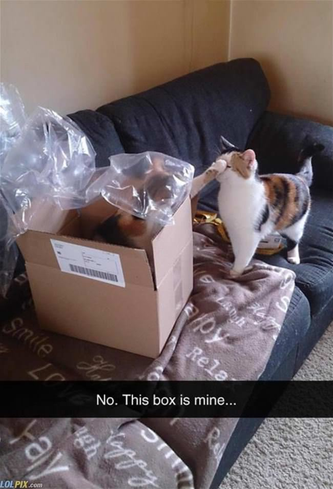 no this box is mine