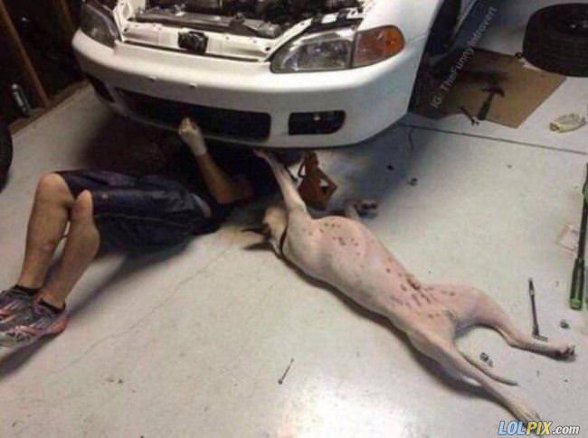 fixing up the car