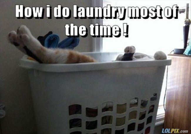 laundry most of the time
