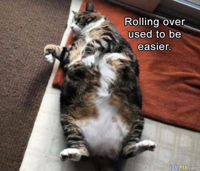 rolling over