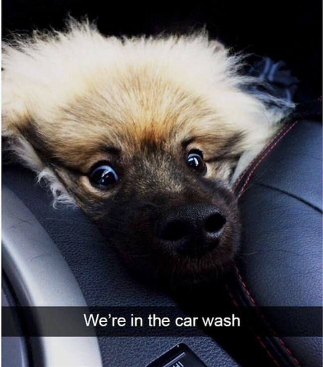 we are in the car wash