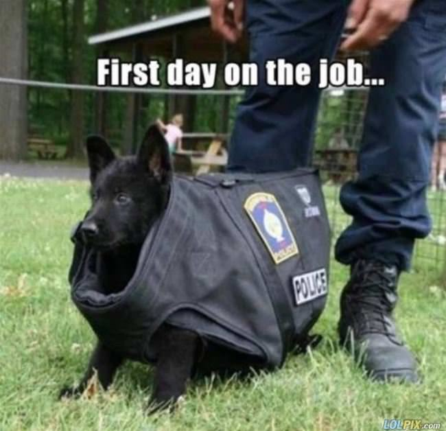 first day on the job