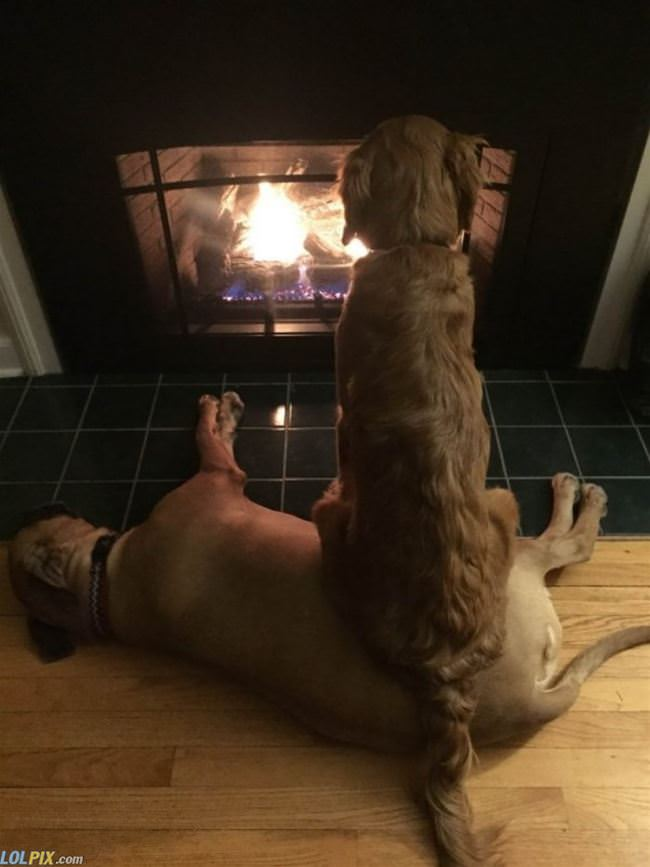 enjoying the fire