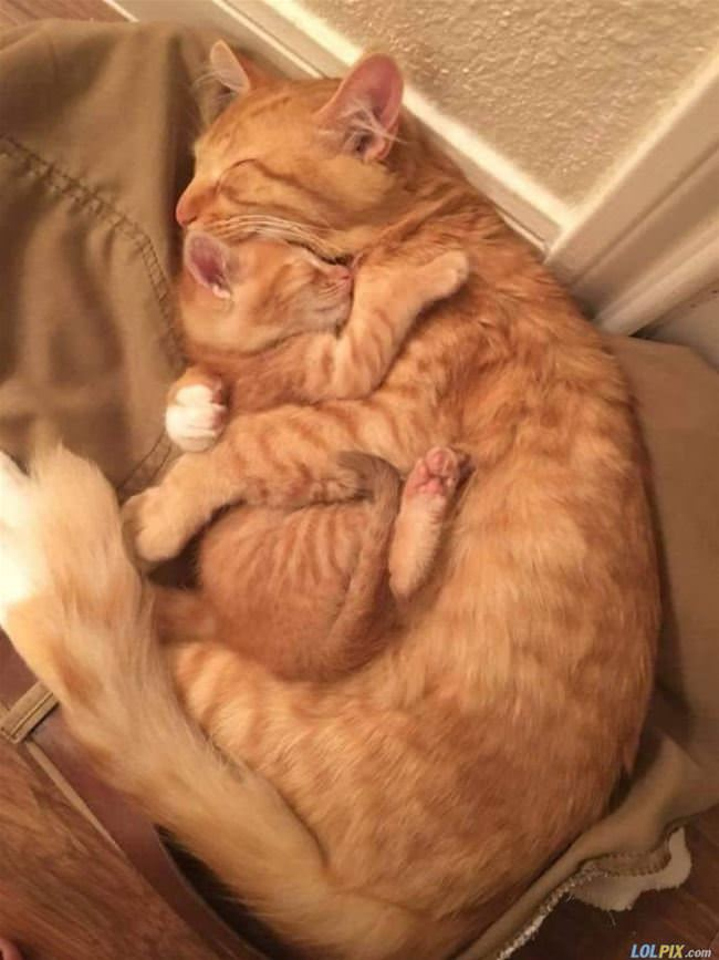 getting all hugged up