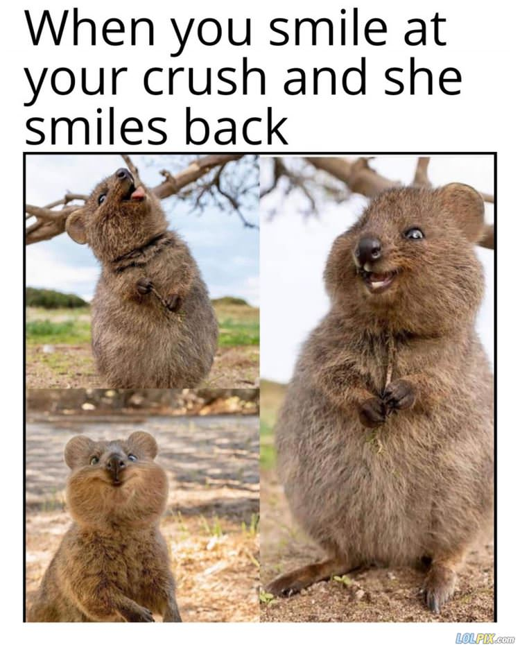 smile at your crush