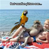epic vacation picture