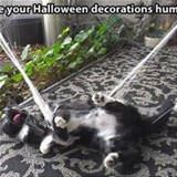 curse your decorations