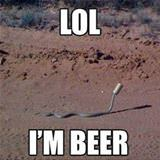 lol im a beer